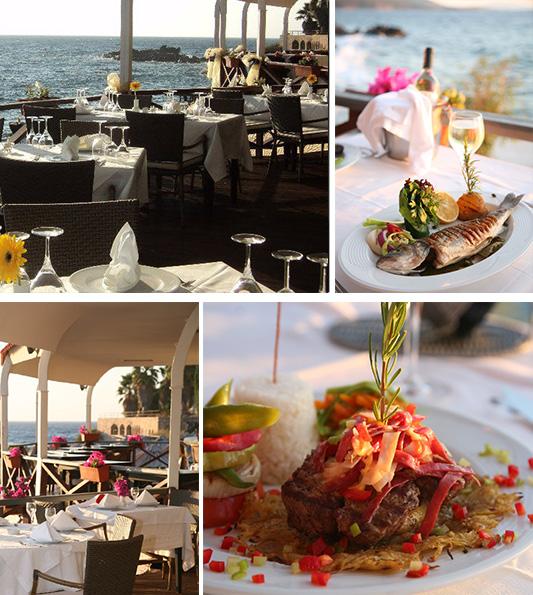 arion-restaurant-hakkinda